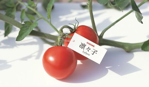 カゴメ那須工場見学&トマト収穫体験ご招待!